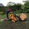Timber removal, Broadstone